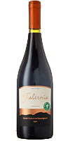 Syrah Cabernet Sauvignon ( Viña Falernia ) 2007