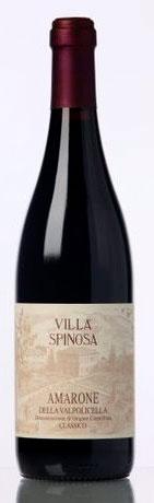 Amarone ( Villa Spinosa ) 2001